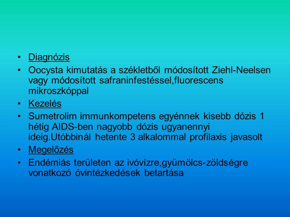 Diagnózis Oocysta kimutatás a székletből módosított Ziehl-Neelsen vagy módosított safraninfestéssel,fluorescens mikroszkóppal.