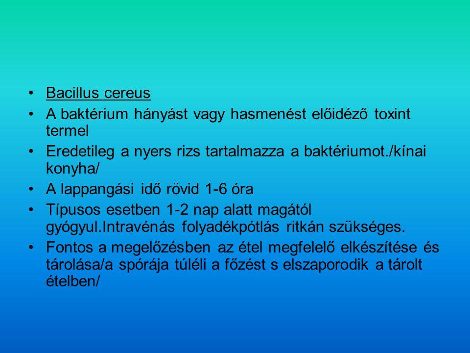 Bacillus cereus A baktérium hányást vagy hasmenést előidéző toxint termel. Eredetileg a nyers rizs tartalmazza a baktériumot./kínai konyha/