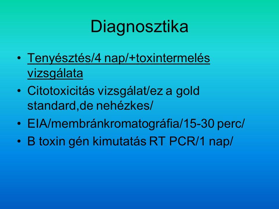 Diagnosztika Tenyésztés/4 nap/+toxintermelés vizsgálata