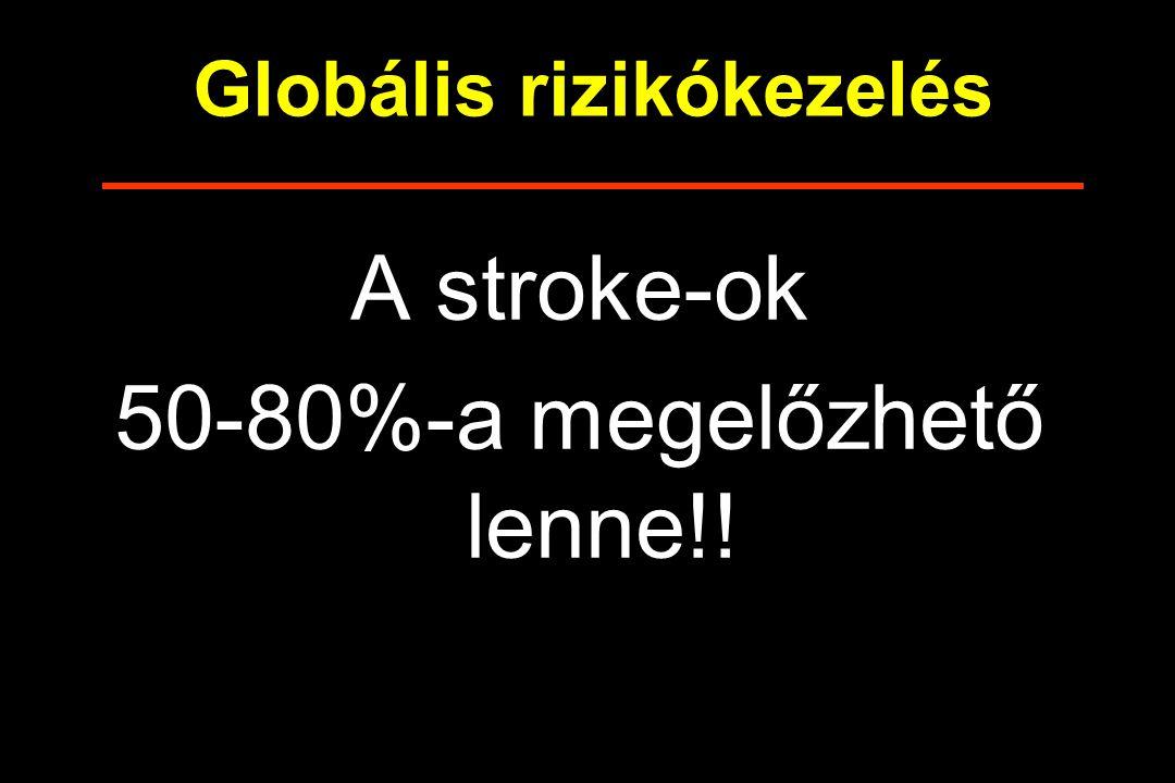 Globális rizikókezelés