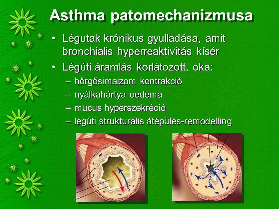Asthma patomechanizmusa