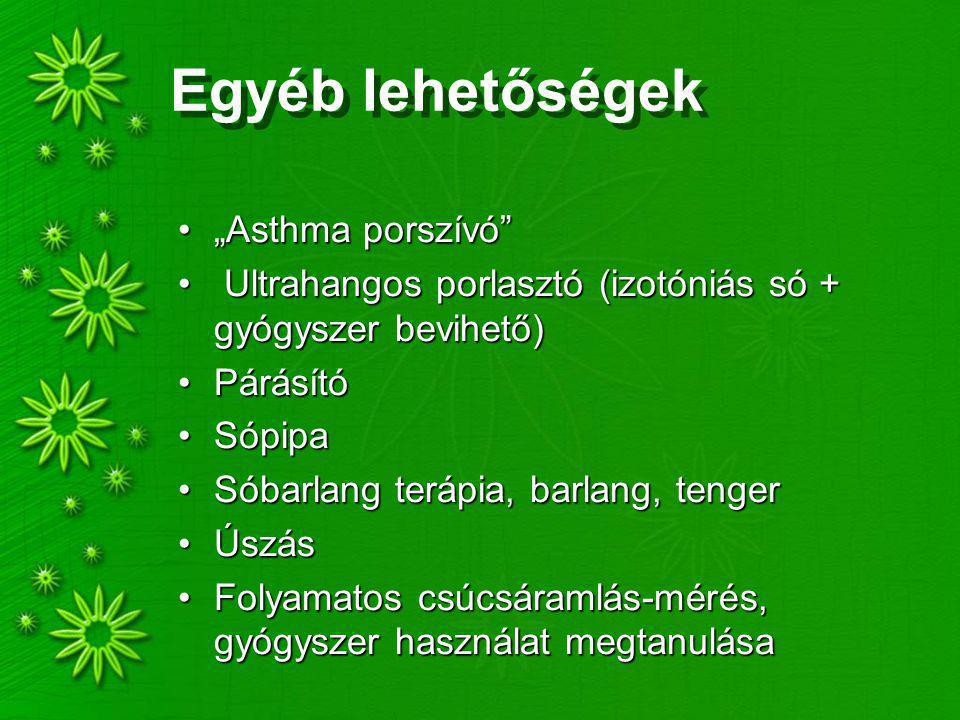 """Egyéb lehetőségek """"Asthma porszívó"""