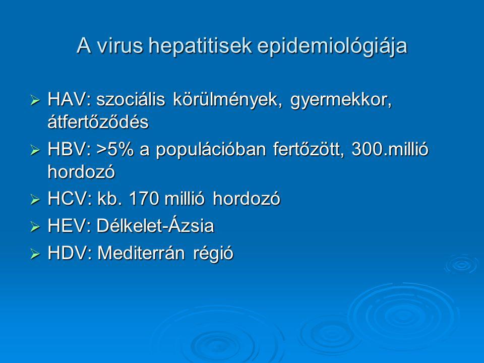 A virus hepatitisek epidemiológiája