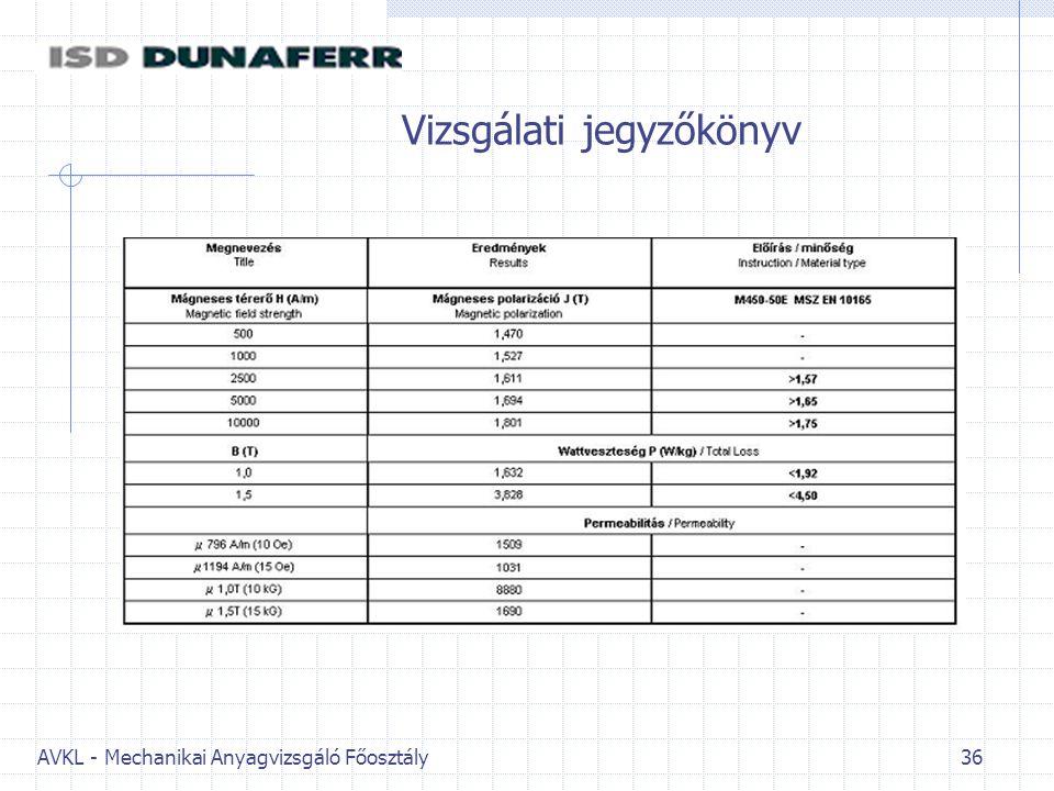 Vizsgálati jegyzőkönyv