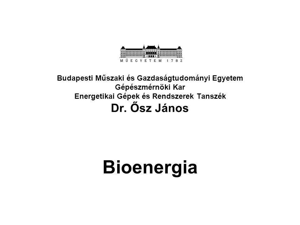 Budapesti Műszaki és Gazdaságtudományi Egyetem Gépészmérnöki Kar Energetikai Gépek és Rendszerek Tanszék Dr. Ősz János
