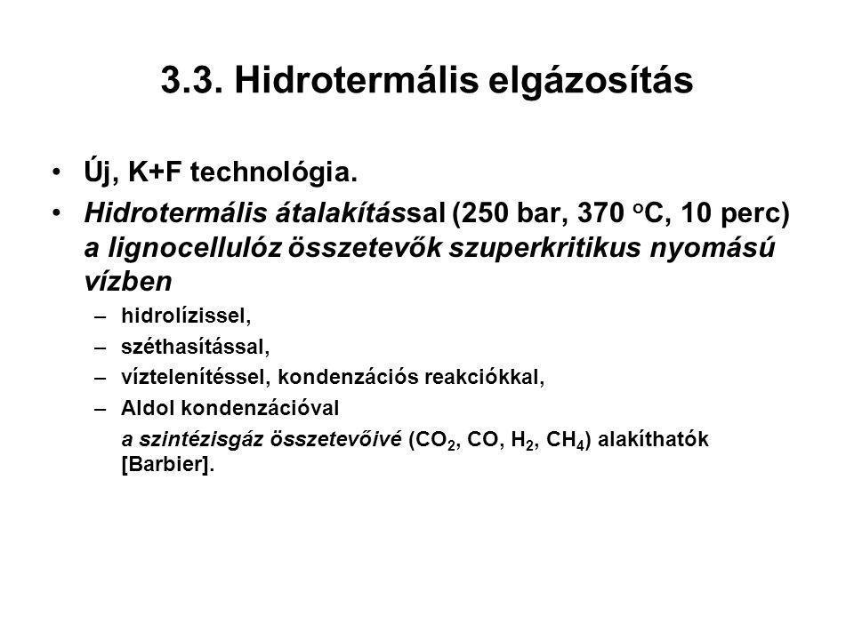 3.3. Hidrotermális elgázosítás
