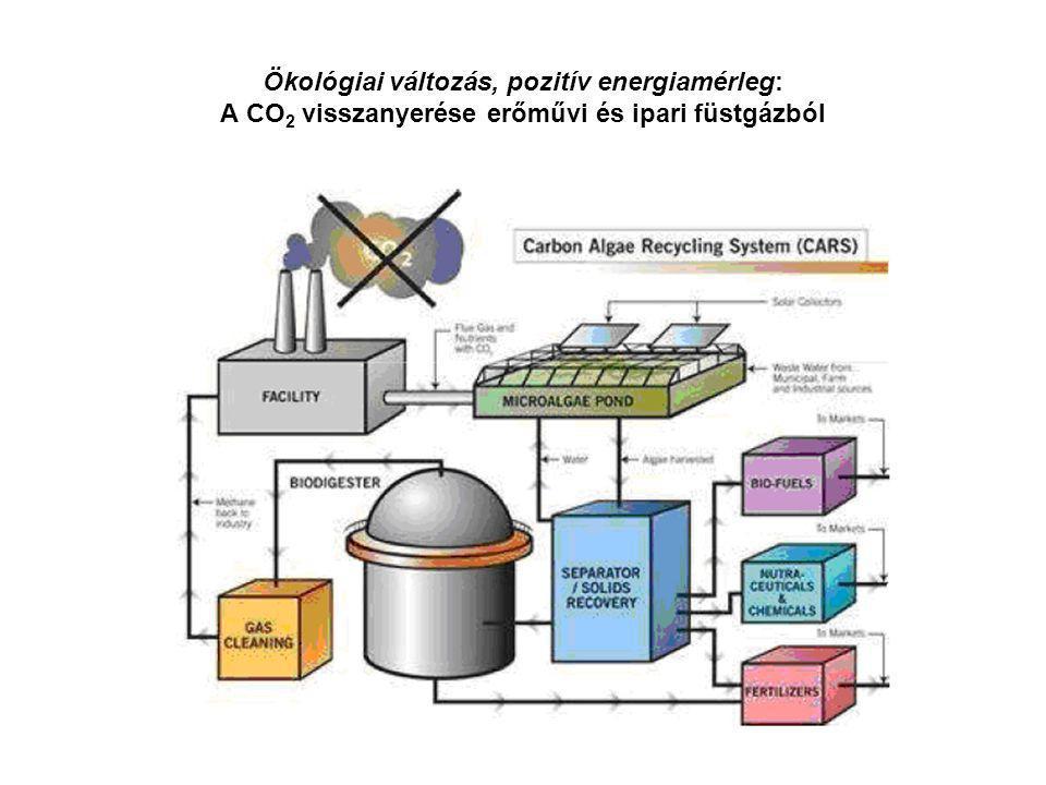 Ökológiai változás, pozitív energiamérleg: A CO2 visszanyerése erőművi és ipari füstgázból