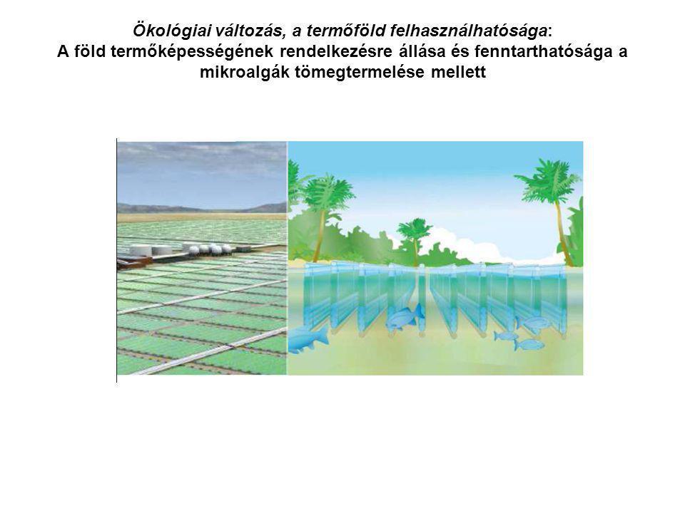 Ökológiai változás, a termőföld felhasználhatósága: A föld termőképességének rendelkezésre állása és fenntarthatósága a mikroalgák tömegtermelése mellett
