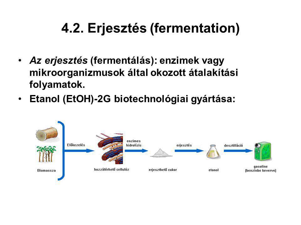 4.2. Erjesztés (fermentation)