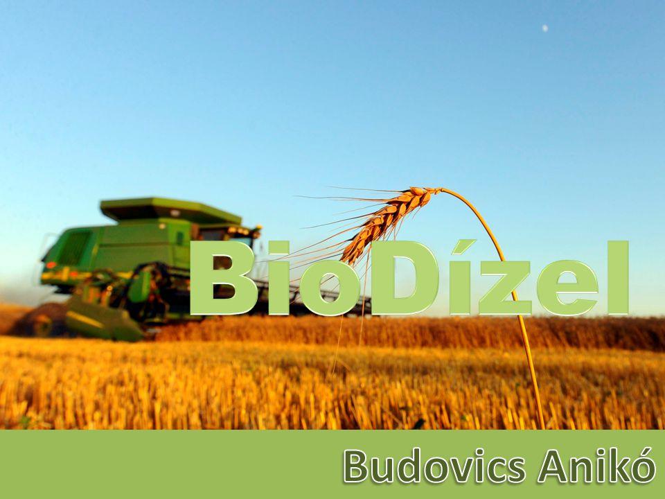 BioDízel Budovics Anikó