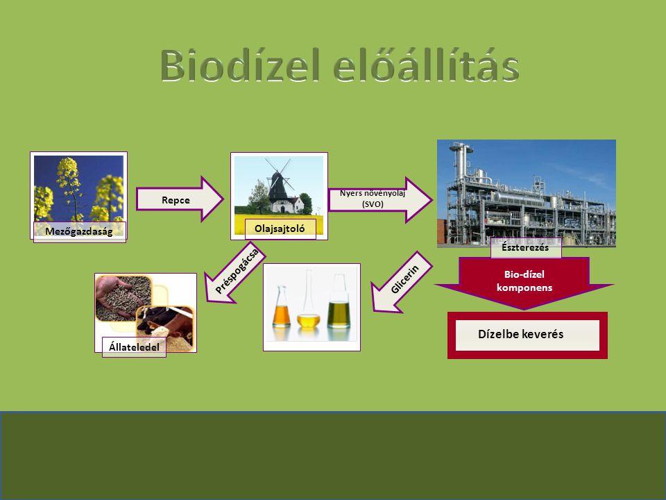 Biodízel előállítás Dízelbe keverés Repce Olajsajtoló Mezőgazdaság