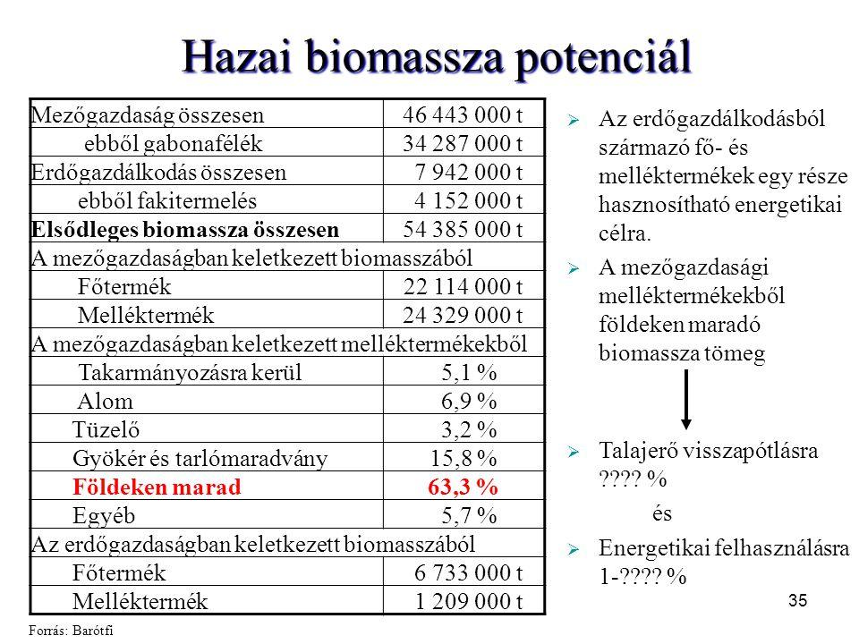 Hazai biomassza potenciál