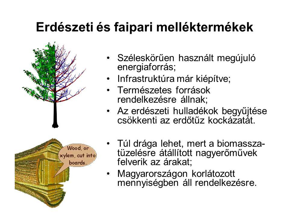 Erdészeti és faipari melléktermékek
