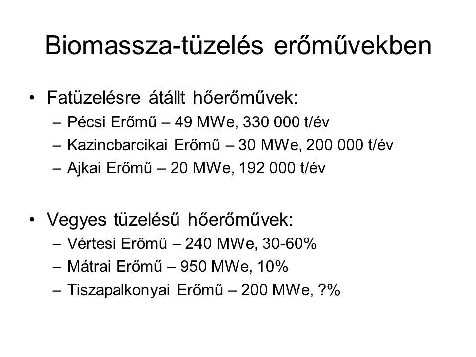 Biomassza-tüzelés erőművekben
