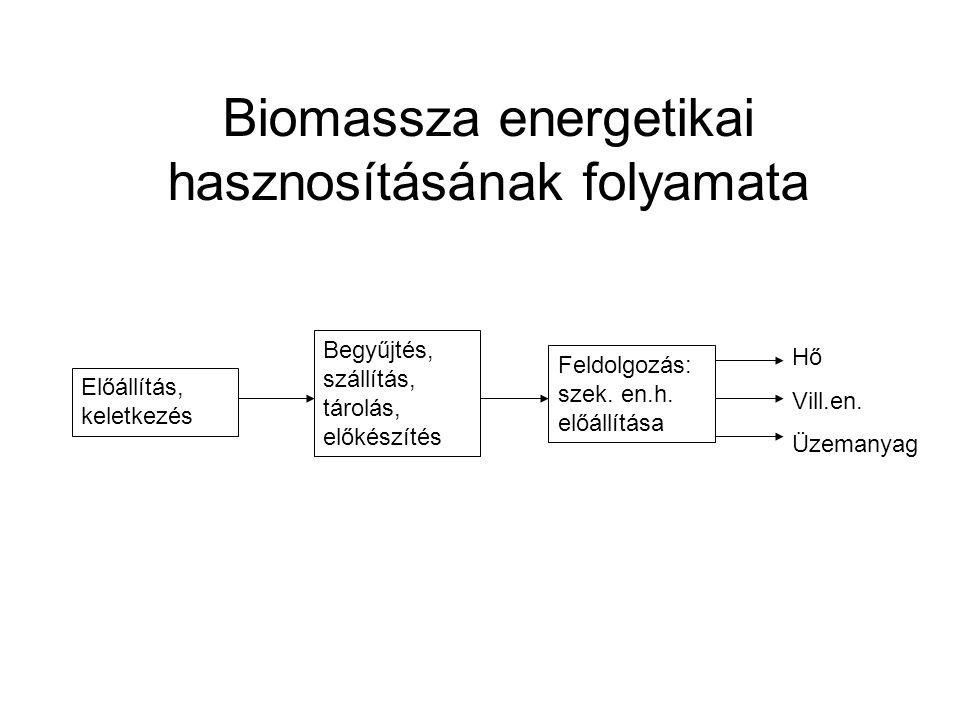Biomassza energetikai hasznosításának folyamata