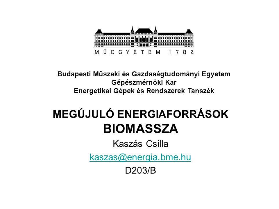 MEGÚJULÓ ENERGIAFORRÁSOK BIOMASSZA