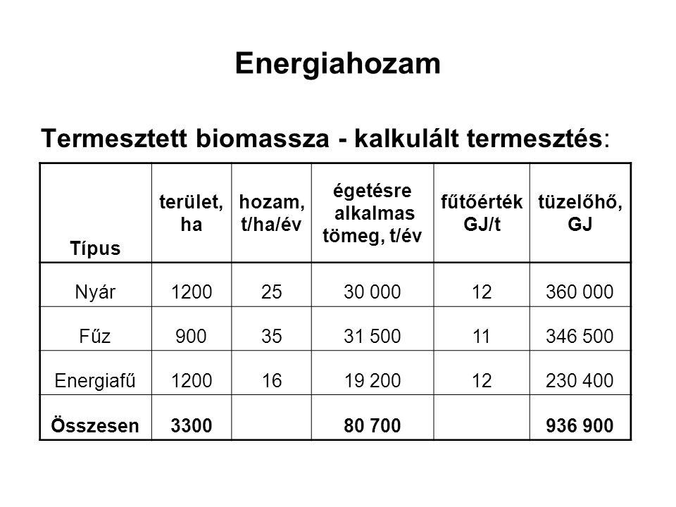 Energiahozam Termesztett biomassza - kalkulált termesztés: Típus