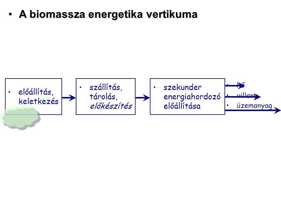 A biomassza energetika vertikuma