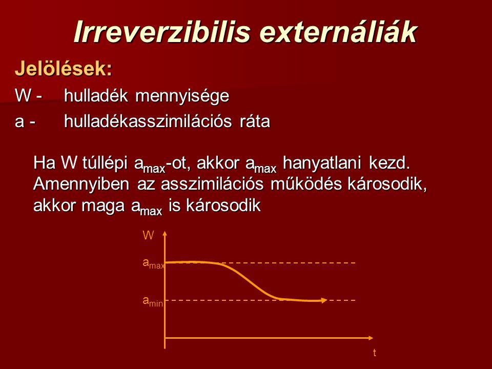 Irreverzibilis externáliák