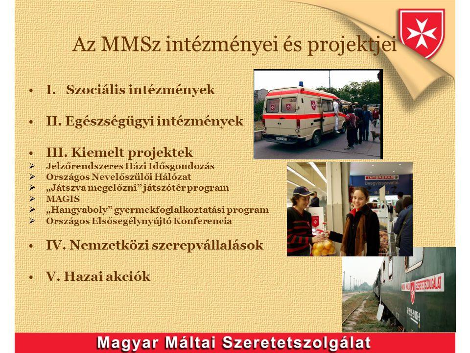 Az MMSz intézményei és projektjei