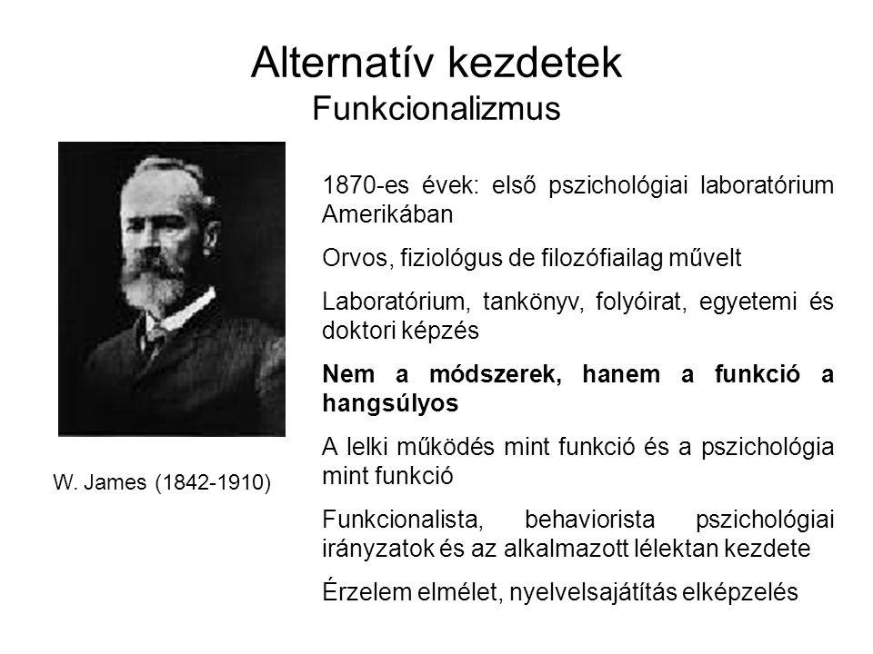 Alternatív kezdetek Funkcionalizmus