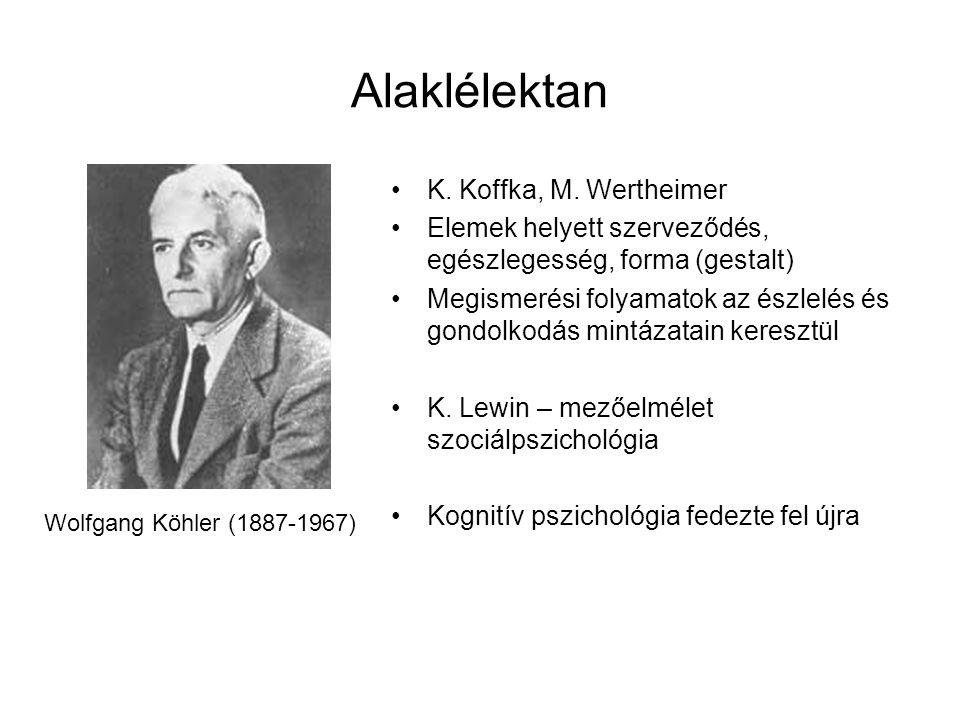 Alaklélektan K. Koffka, M. Wertheimer