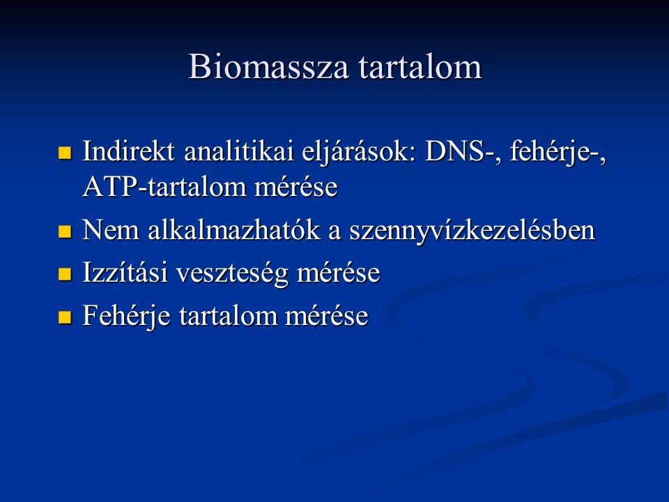 Biomassza tartalom Indirekt analitikai eljárások: DNS-, fehérje-, ATP-tartalom mérése. Nem alkalmazhatók a szennyvízkezelésben.
