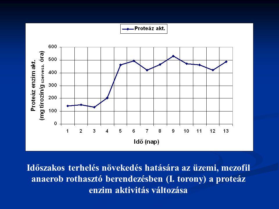 Időszakos terhelés növekedés hatására az üzemi, mezofil anaerob rothasztó berendezésben (I.