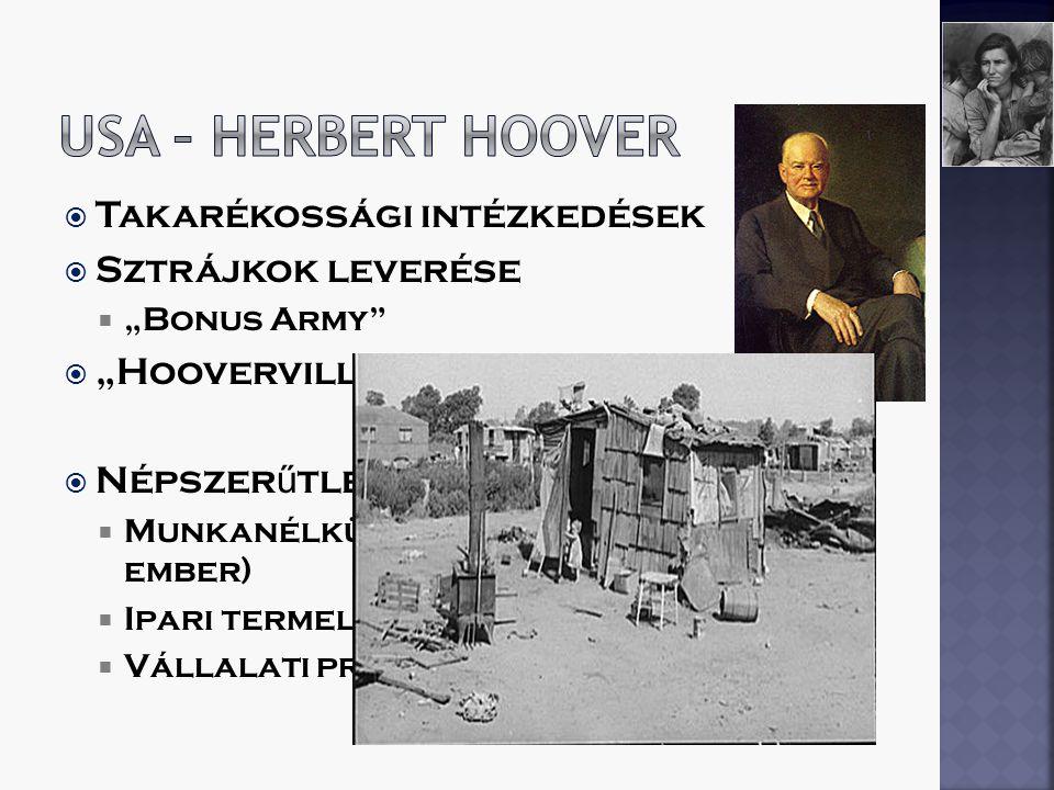 USA – herbert Hoover Takarékossági intézkedések Sztrájkok leverése