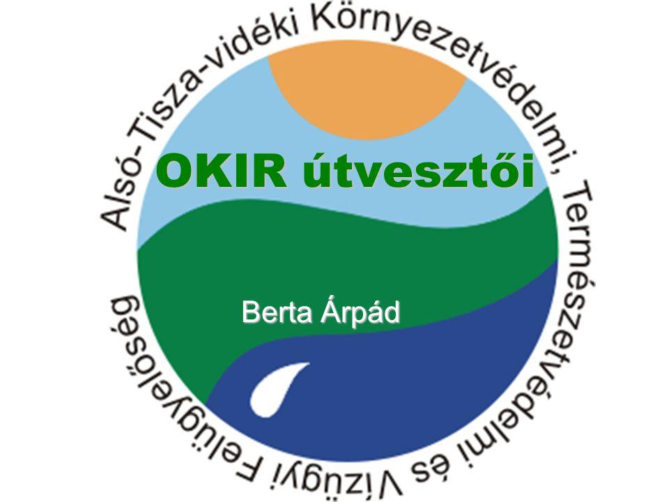OKIR útvesztői Berta Árpád