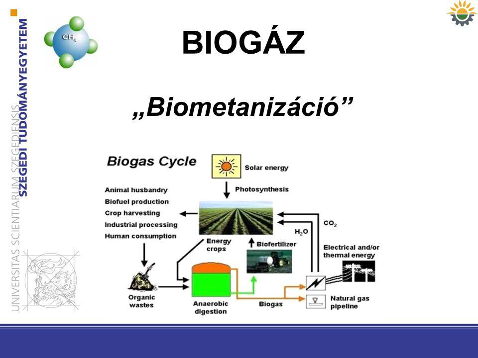 "BIOGÁZ ""Biometanizáció"