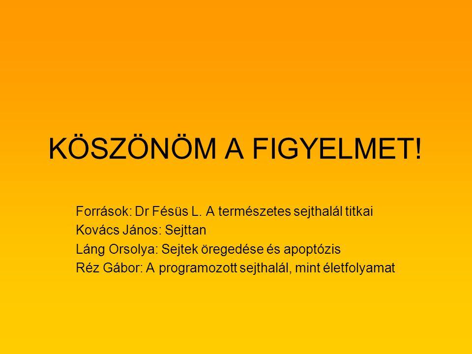 KÖSZÖNÖM A FIGYELMET! Források: Dr Fésüs L. A természetes sejthalál titkai. Kovács János: Sejttan.