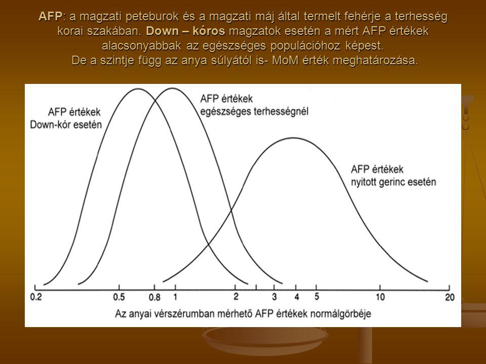 AFP: a magzati peteburok és a magzati máj által termelt fehérje a terhesség korai szakában.