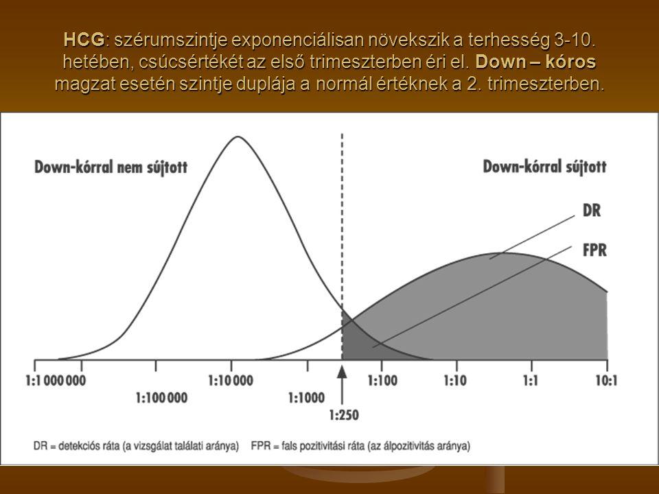 HCG: szérumszintje exponenciálisan növekszik a terhesség 3-10
