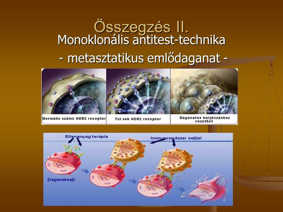 Összegzés II. Monoklonális antitest-technika