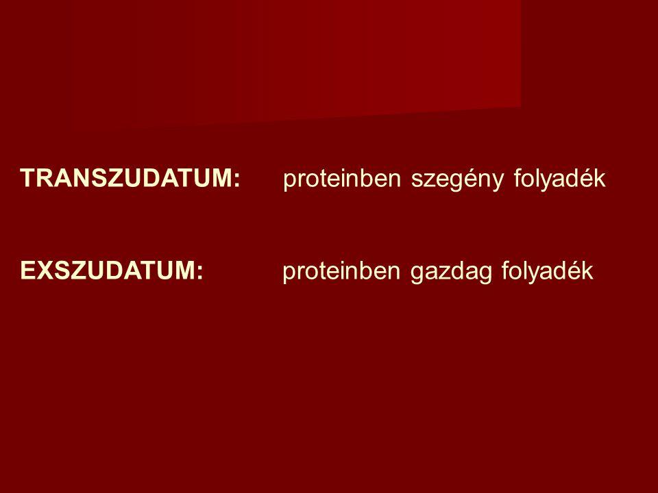 TRANSZUDATUM: proteinben szegény folyadék