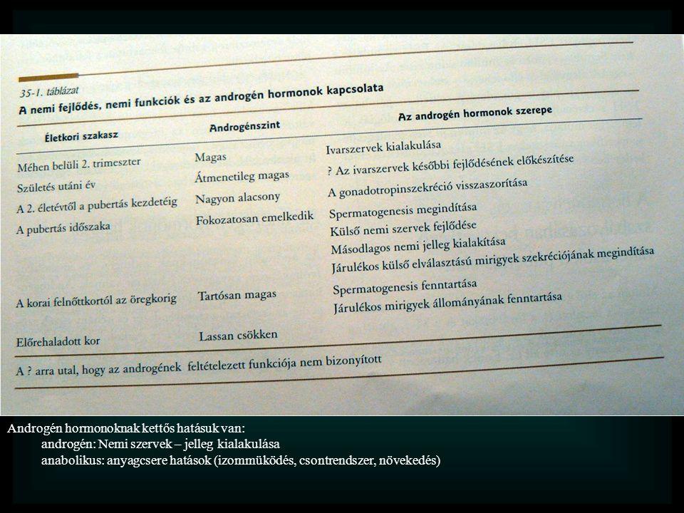 Androgén hormonoknak kettős hatásuk van: androgén: Nemi szervek – jelleg kialakulása anabolikus: anyagcsere hatások (izommüködés, csontrendszer, növekedés)