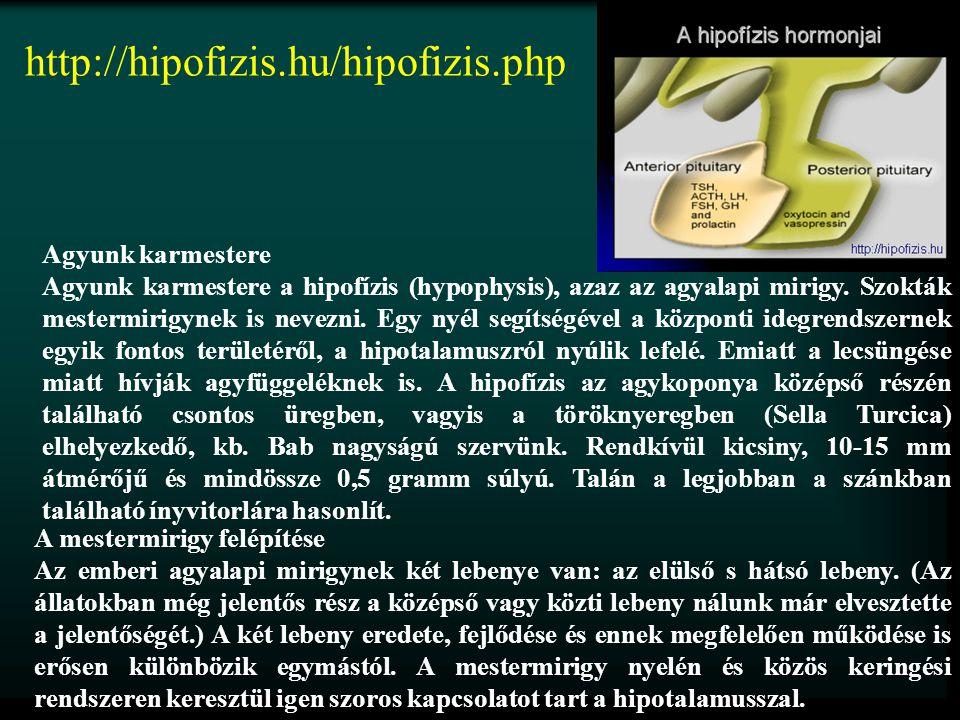 http://hipofizis.hu/hipofizis.php Agyunk karmestere