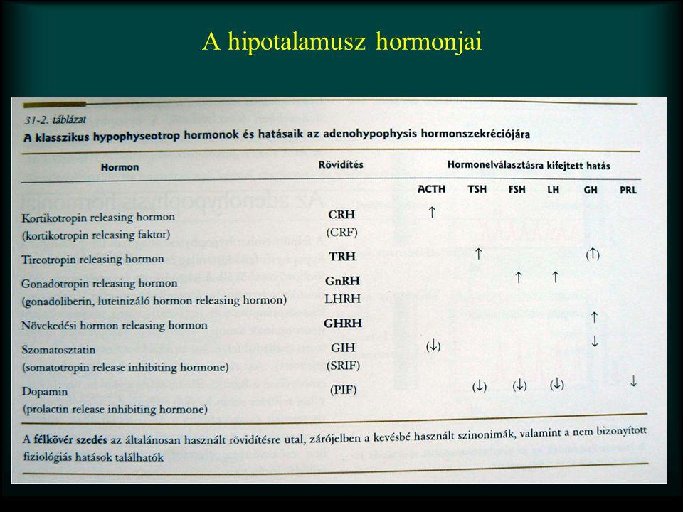 A hipotalamusz hormonjai