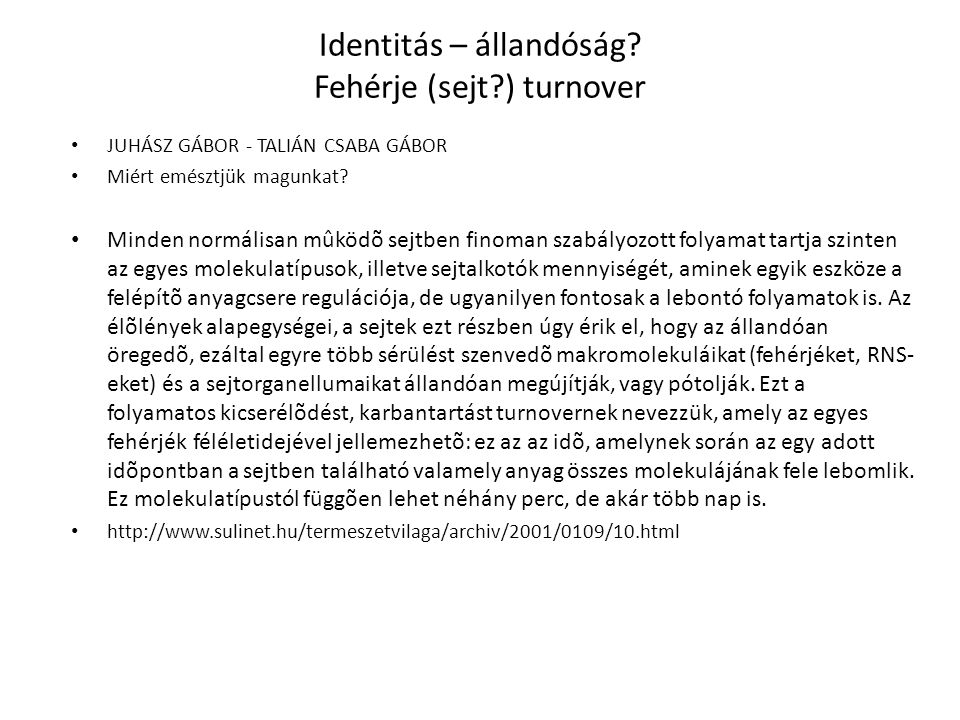 Identitás – állandóság Fehérje (sejt ) turnover