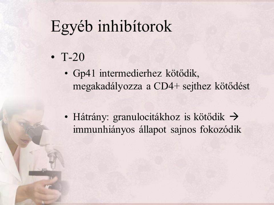 Egyéb inhibítorok T-20. Gp41 intermedierhez kötődik, megakadályozza a CD4+ sejthez kötődést.