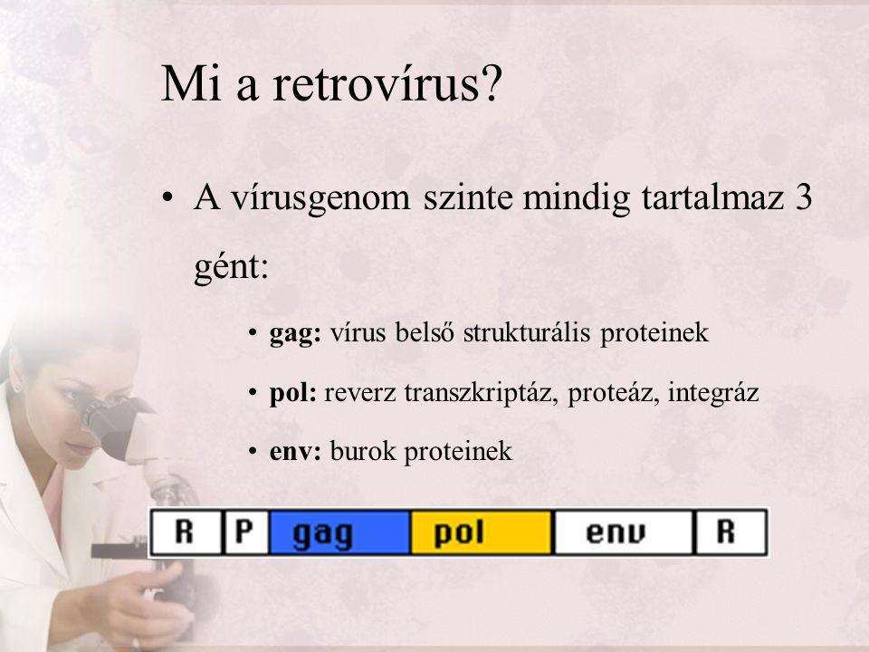 Mi a retrovírus A vírusgenom szinte mindig tartalmaz 3 gént: