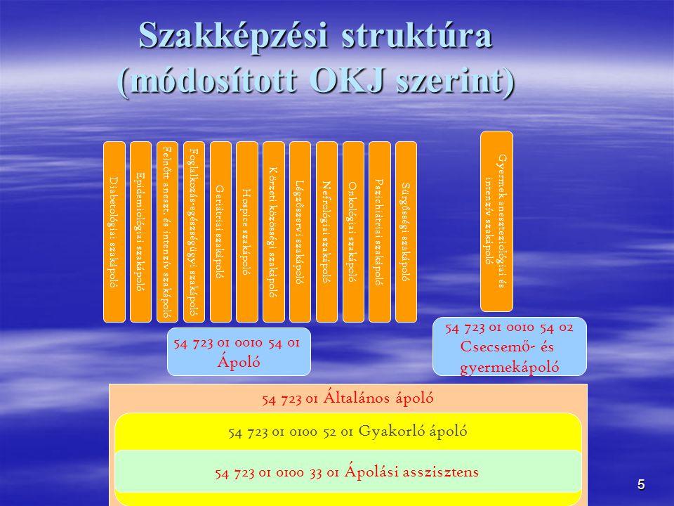 Szakképzési struktúra (módosított OKJ szerint)