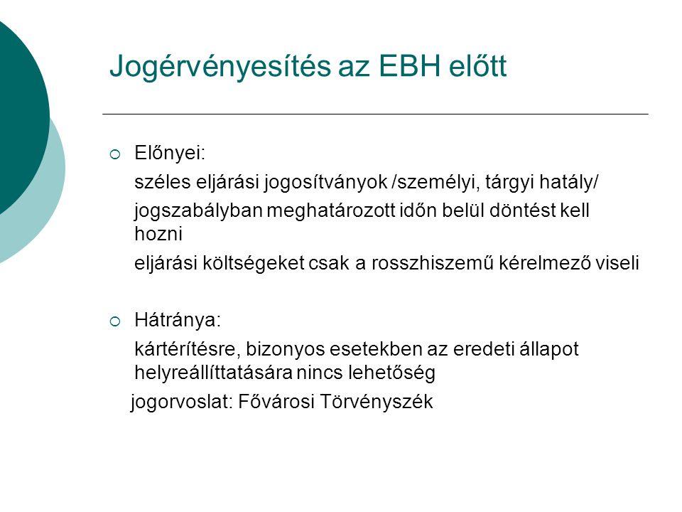 Jogérvényesítés az EBH előtt