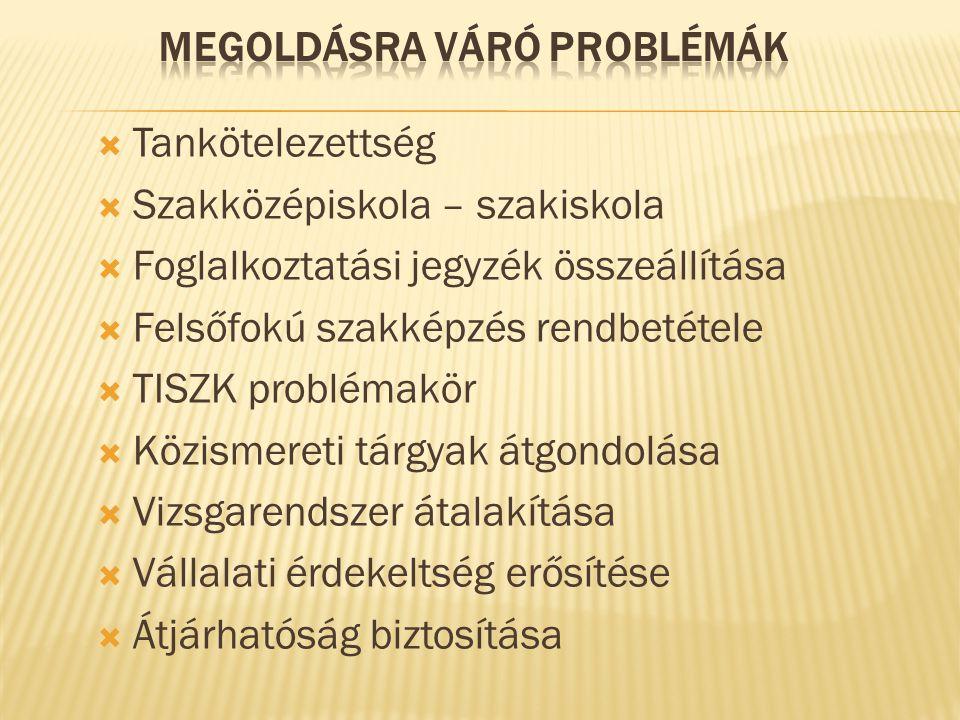 Megoldásra váró problémák