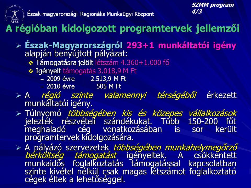 A régióban kidolgozott programtervek jellemzői
