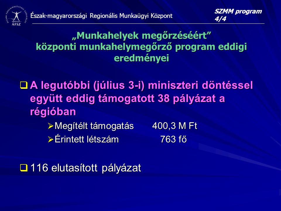 """SZMM program 4/4 """"Munkahelyek megőrzéséért központi munkahelymegőrző program eddigi eredményei."""