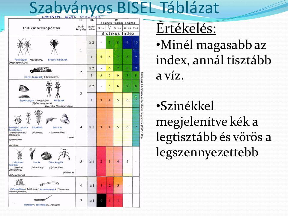 Szabványos BISEL Táblázat