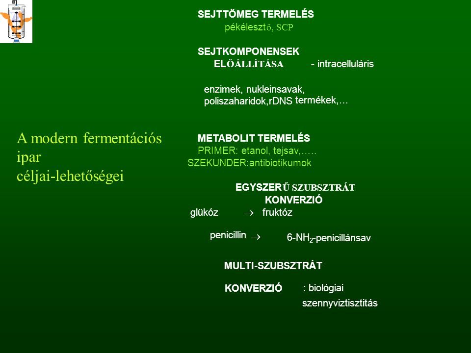 A modern fermentációs ipar céljai-lehetőségei SEJTTÖMEG TERMELÉS