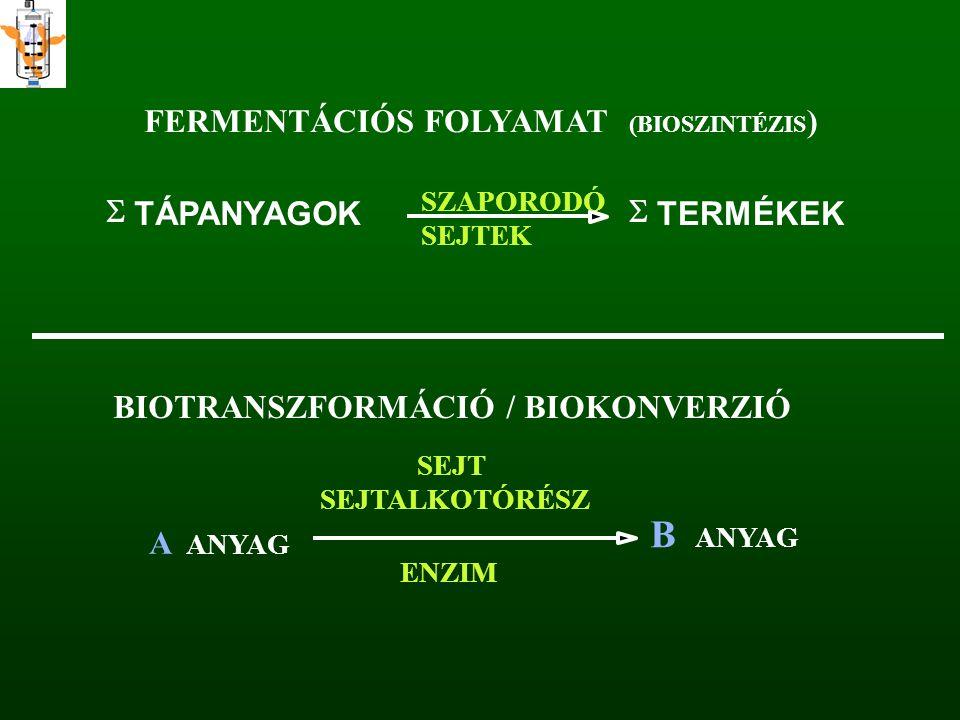 B FERMENTÁCIÓS FOLYAMAT ) S TÁPANYAGOK S TERMÉKEK